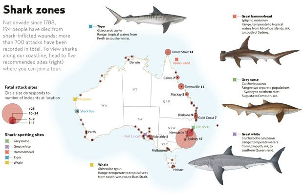 Fatal shark attacks in Australia 1788-2008. (Credit: Australian Geographic)