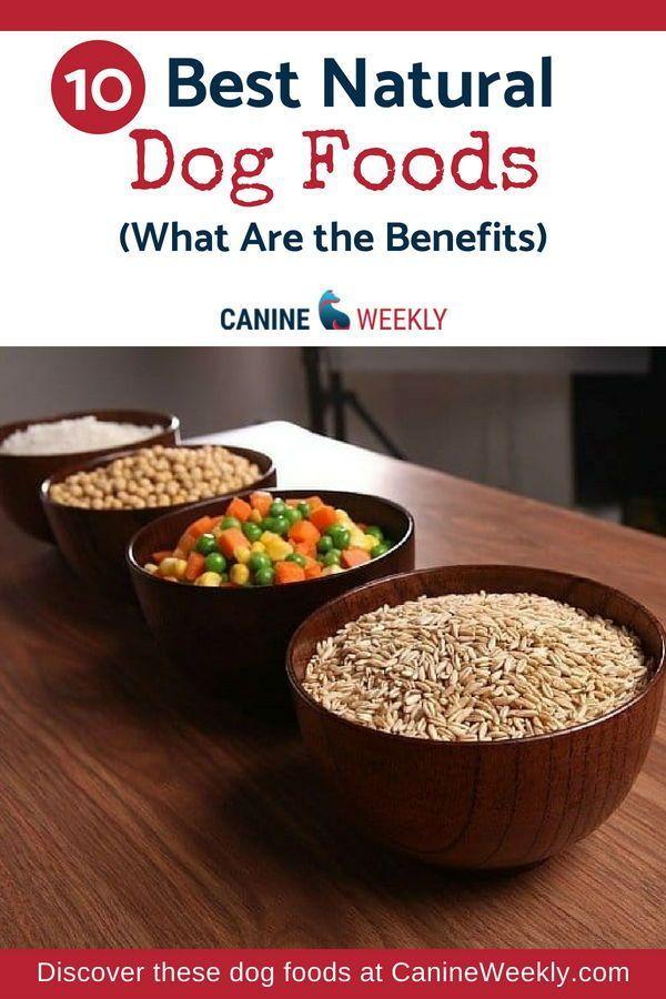 10 Best Natural Dog Food For 2020 Foods Without Fillers Dog