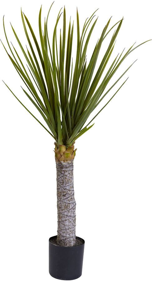 Asstd National Brand Nearly Natural 3-ft. Yucca Tree