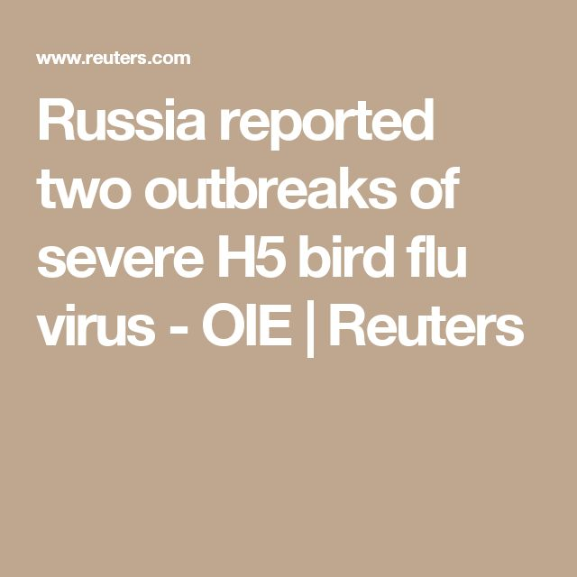 Russia reported two outbreaks of severe H5 bird flu virus - OIE | Reuters