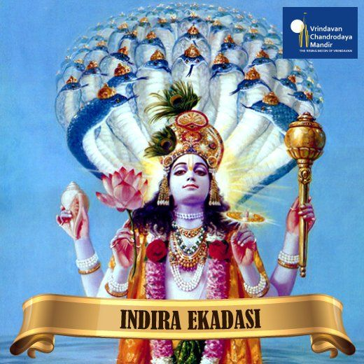 The story of Indira Ekadasi was narrated to Yudhishtira by Lord Krishna. Comment Hare Krishna if you're observing this fast today!