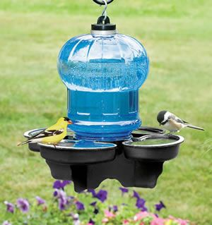 Our versatile bird waterer can be hung from a shepherd's hook, mounted on a 4 x 4 post, or simply placed on the ground. It's perfect for sma...