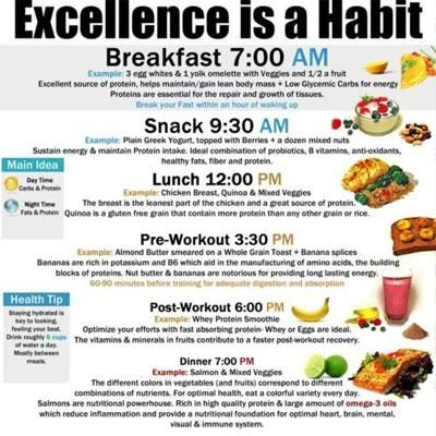 excellence is a habit. ideas of what to eat and when for optimum metabolism stabilization and energy.