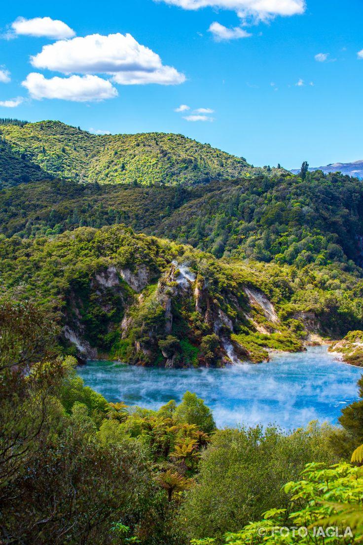Neuseeland (Nordinsel) - Waimangu Volcanic Valley