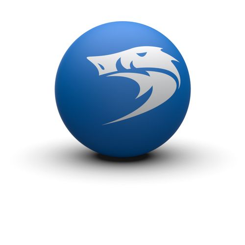 BEACH BOAR® MEDIUM SPEED BEACH BOAR MEDIUM SPEED frescobol ball. The BLUE ball is a very popular ball and perfect choice for beginners and intermediate players. Players appreciate this ball due to it's ideal speed and crisp and light weight feel.  Player level: Beginner to Intermediate Blue, 54 mm. Available in 3-pack
