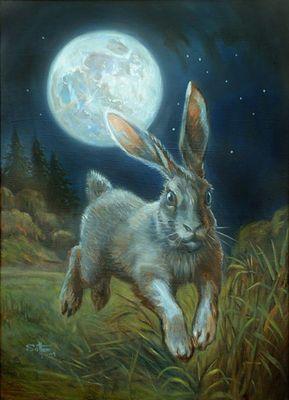 Moon hare - Oil on primed masonite | Hares & Rabbits ...