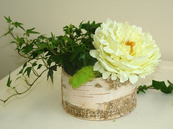 bouleau écorce bois vases arrangement fleur pot par aniamelisa