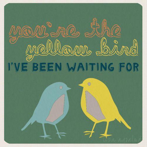 Bright eyes-Poison Oak gosh I love this song