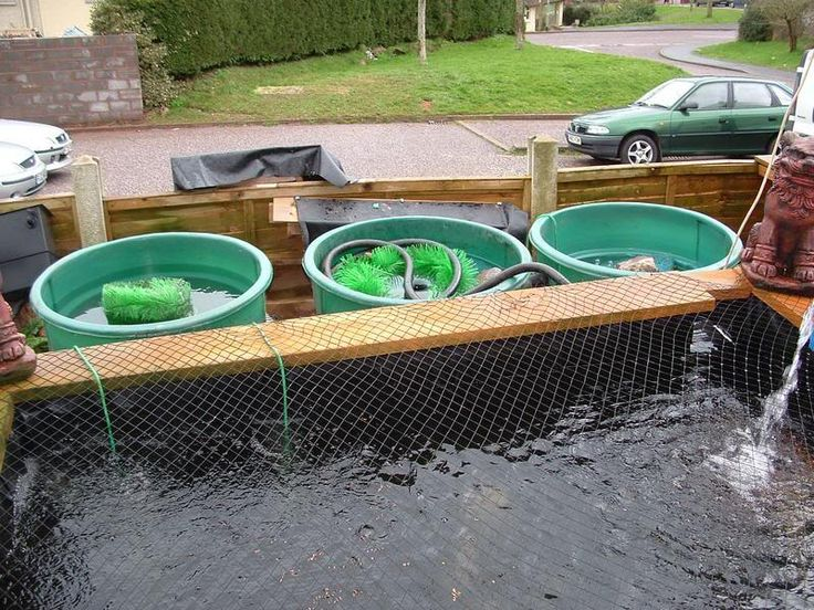 1000 Images About Fish Ponds Filters For Gardening Ideas On Pinterest Gardens Garden Ideas