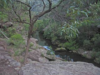 Kanuka Brook - Bushwalking NSW