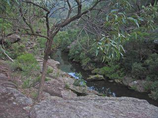 Kanuka Brook - Bushwalking NSW