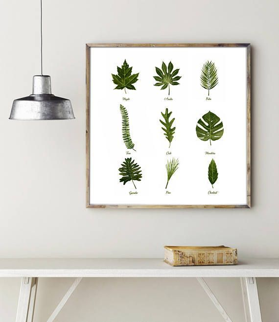 Minimalist leaves Watercolor Green Art Green Flower Poster by LadyWatercolor | Etsy #botanical #watercolor #art #illustration #picture #art #prints #plant #herb #minimalist #leaves #flower #green #poster