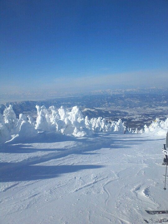 """""""Zaou-ski place"""" is famous ski place in Japan! You can see beautiful sightseeing and take good hot spring!"""
