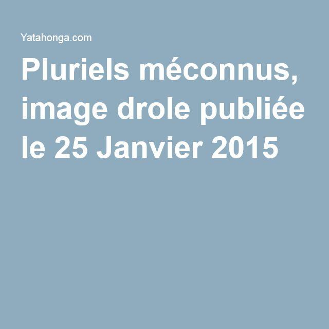 Pluriels méconnus, image drole publiée le 25 Janvier 2015