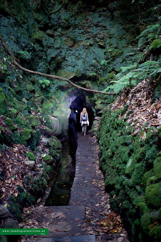 Levada do Caldeirão Verde, Madeira island, Portugal ✯ ωнιмѕу ѕαη∂у