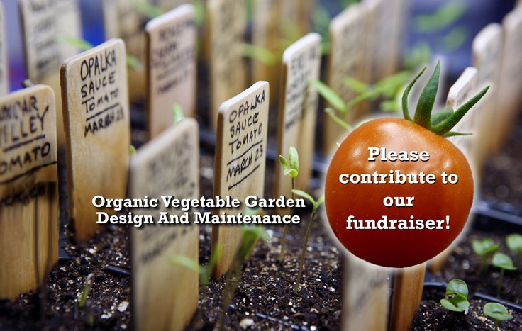 The Backyard Urban Farm Co. | Organic Farming | Urban Agriculture | Backyard Farming | Urban Farming