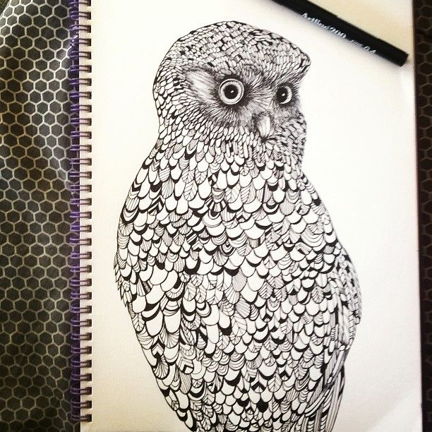 Morepork, more cheese, more beef #nzowl #pendrawing #artline200 #sketch #owl #nznativebird #patterns #bird #drawing