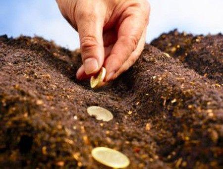 Cat putem castiga din dividende in acest an
