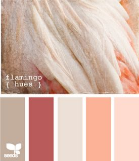 Flamingo colored room. I love the idea but that dark pink isn't quite right. Or replace the second from the right.