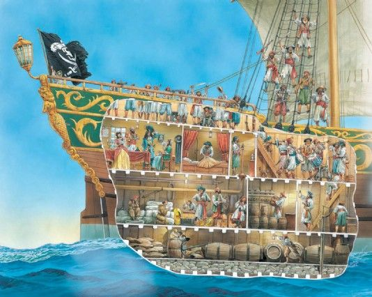 A cutaway illustration of pirate life | pirates trong 2019 ...