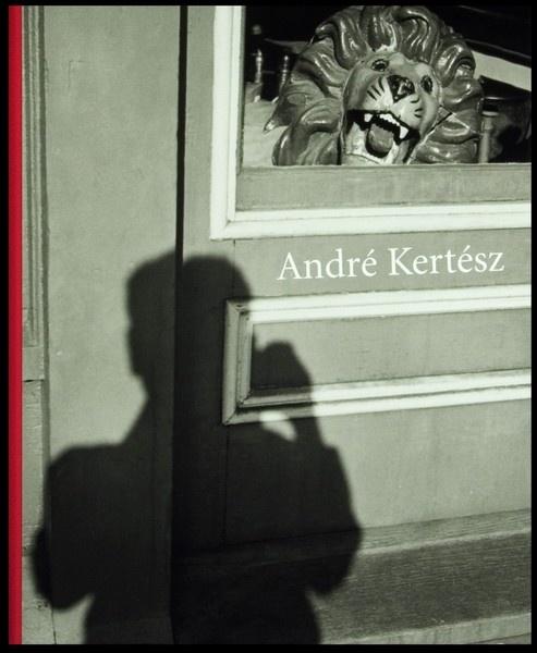 André Kertész - http://www.amazon.com/gp/product/0691121141/ref=as_li_ss_tl?ie=UTF8=1789=390957=0691121141=as2=topphotfilm-20
