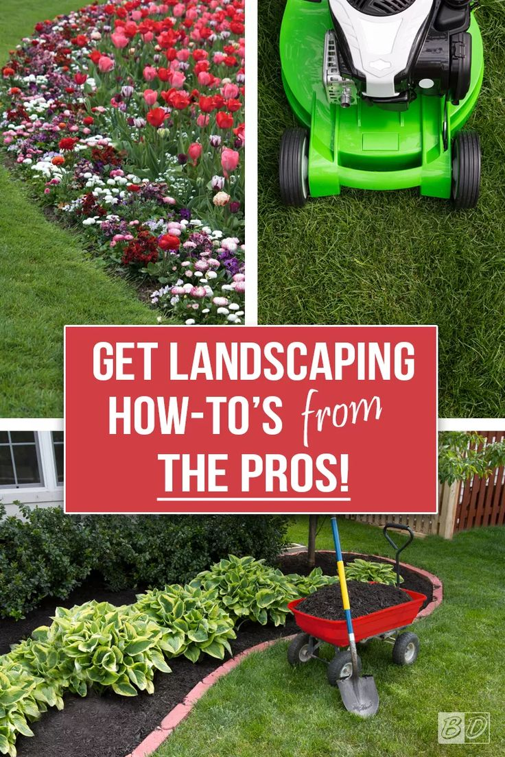 Best 20 curb appeal landscaping ideas on pinterest landscaping borders landscape borders and Home selling four diy tricks to maximize the curb appeal
