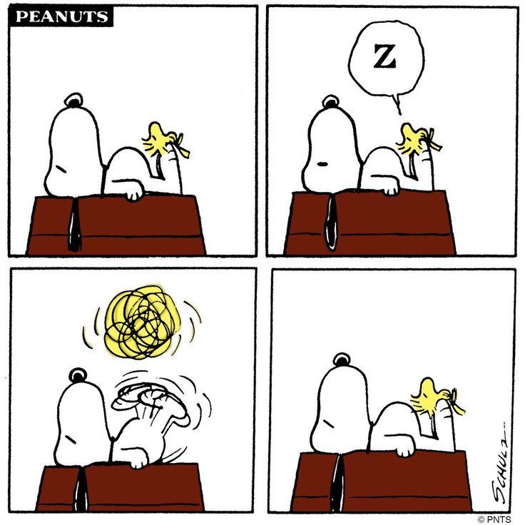 470 best GOOD GRIEF CHARLIE BROWN images on Pinterest   Snoopy de ...