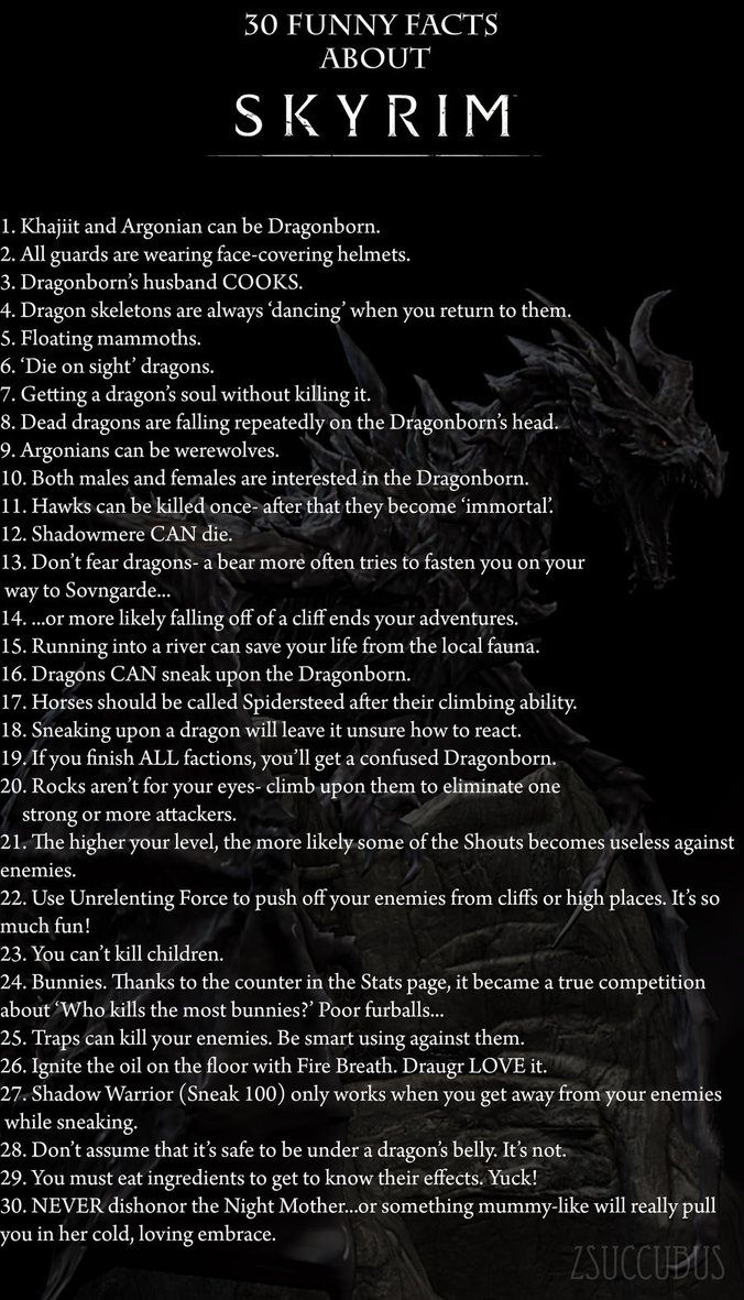 30 Funny Facts about Skyrim
