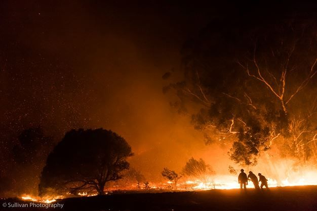 GALLERY: Strong winds fuel Cape Town inferno | News24  Brave firefighters