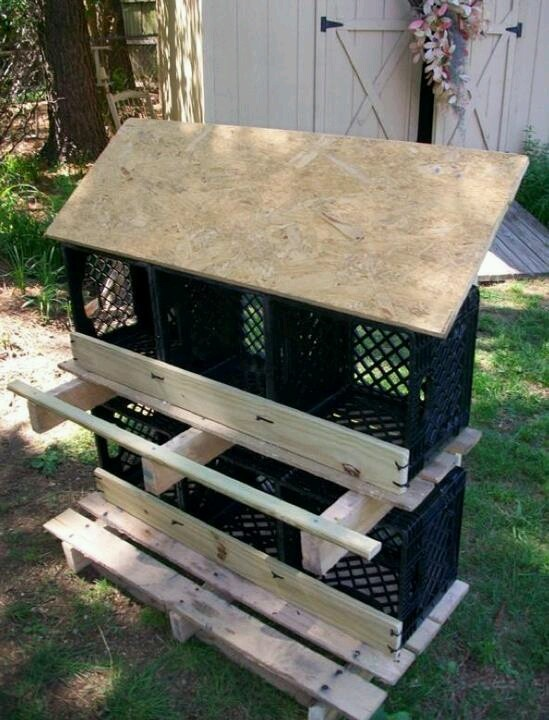 Create chicken nesting boxes