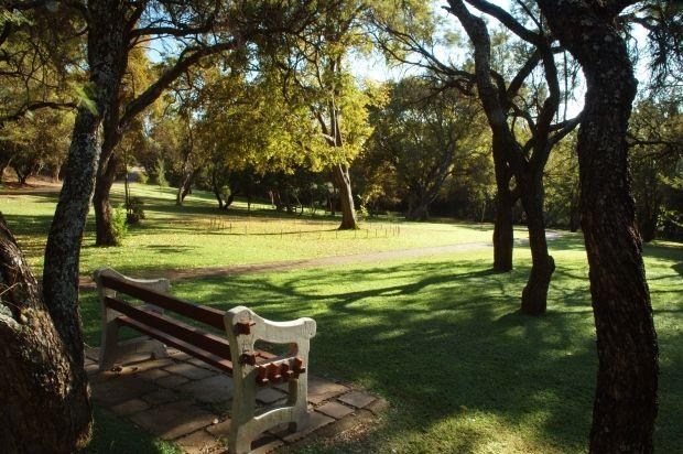 Take a trip to the Walter Sisulu Botanical Garden.