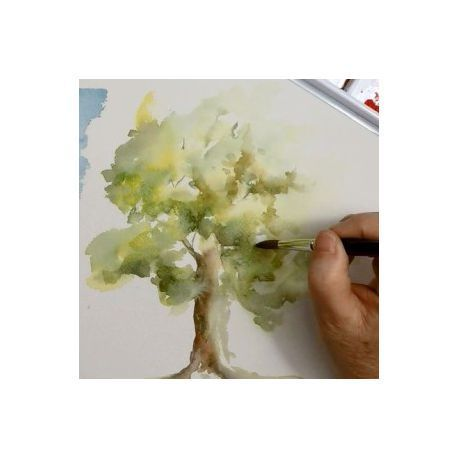 1244 best AQuarelle  techniques images on Pinterest Water colors - Poser Papier A Peindre