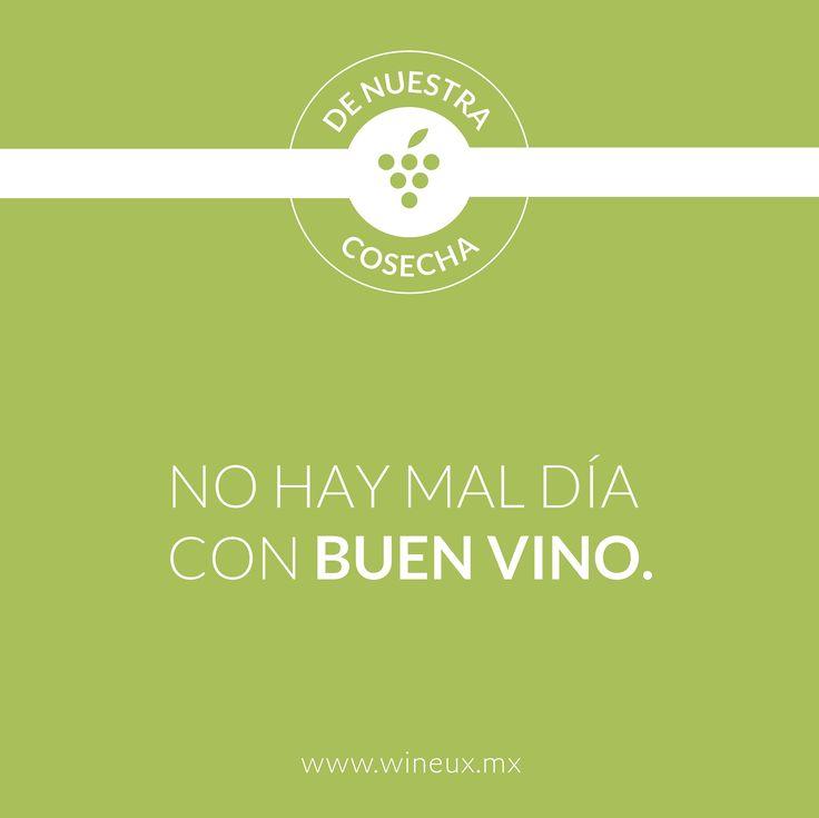 Si todo depende del cristal con que se mira, yo prefiero ver desde de mi copa llena. Compra en línea y empieza a ver la vida distinta: www.wineux.mx #FrasesDeVino #Vino #VinoMexicano #Wine