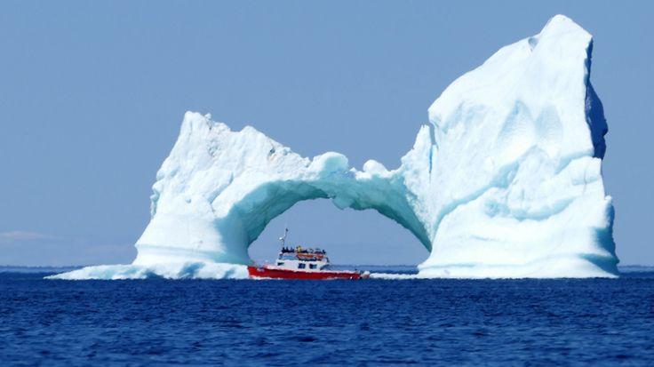 Terre-Neuve-et-Labrador - 7000 km sur les routes de Terre-Neuve-et-Labrador