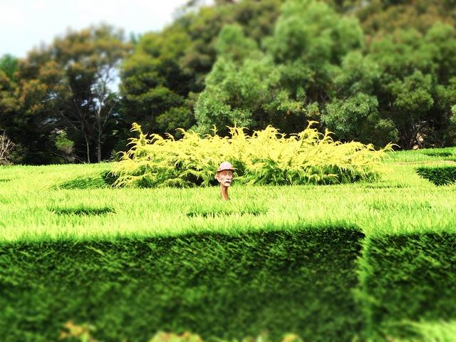 the maze  http://www.gtcdesign.net