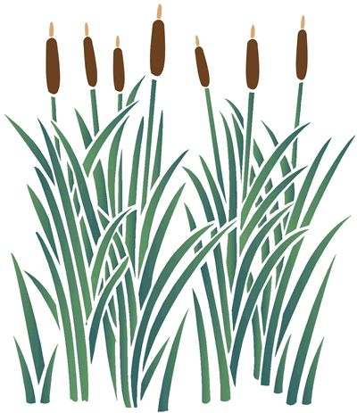 67 Best Bulrushes Images On Pinterest Basket Weaving