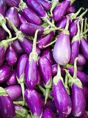 bright purple eggplants / all heaped in a sun-warmed pile / little touch of green