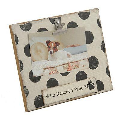 8 Best Dog Stuff Images On Pinterest Dog Accessories Dog Stuff