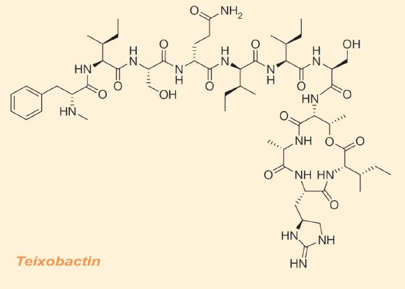 A group of researchers led by Prof Kim Lewis of Northeastern University in Boston, Massachusetts, has discovered a new antibiotic that eliminates Methicillin-resistant Staphylococcus aureus (MRSA), Mycobacterium tuberculosis, Streptococcus pneumoniae, Bacillus anthracis and other dangerous pathogens without encountering any detectable resistance.