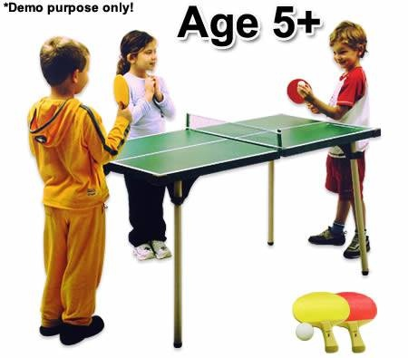 Portable table tennis table, perfect for outdoor or indoor use.