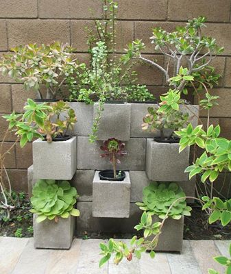 Budget & Space Friendly: DIY Cinderblock Planters | Back to Nature ...