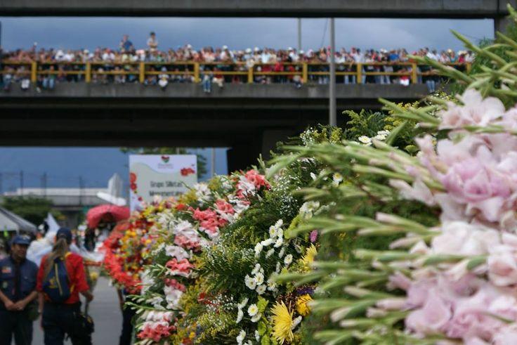 El desfile se realiza siempre en agosto, pero en el corregimiento de Santa Elena se vive la cultura de flores todo el año.