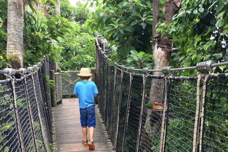 Der (Ein-Eltern-)Familienreiseblog Unterwegs mit Kind persönlich: Wer steckt dahinter? Was treibt mich zum Allein Reisen mit Kind an? Wie und wohin gehts?