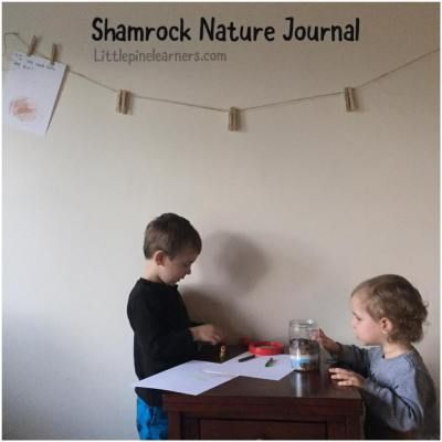 Help your kindergartener learn the basics of documenting their learning with this reggio emilia inspired nature journal idea.