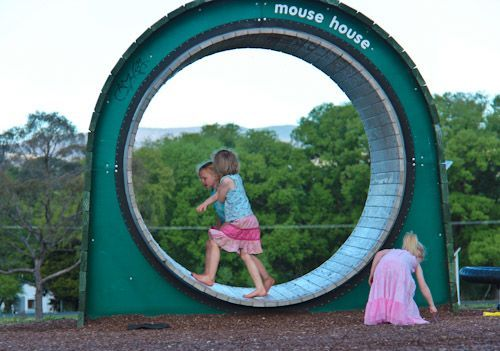 giant hamster wheel as compost turner? Brilliant. Not for our playground but brilliant nevertheless!