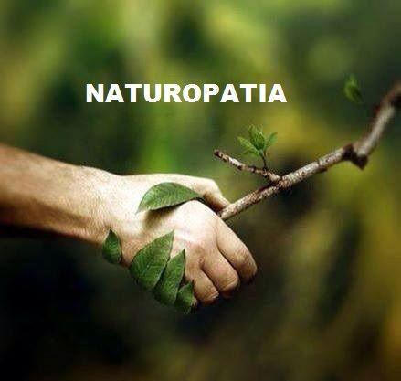 Las plantas son seres vivos y no un producto químico, tienen un metabolismo interno, producen energía. Hay dos tipos de metabolismo: Metabolismo primario.- proceso químico que interviene en forma directa en la supervivencia, crecimiento y reproducción de las plantas. Son procesos