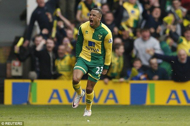 Canaries defender Martin Olsson celebrates scoring a dramatic winner against Newcastle at Carrow Road