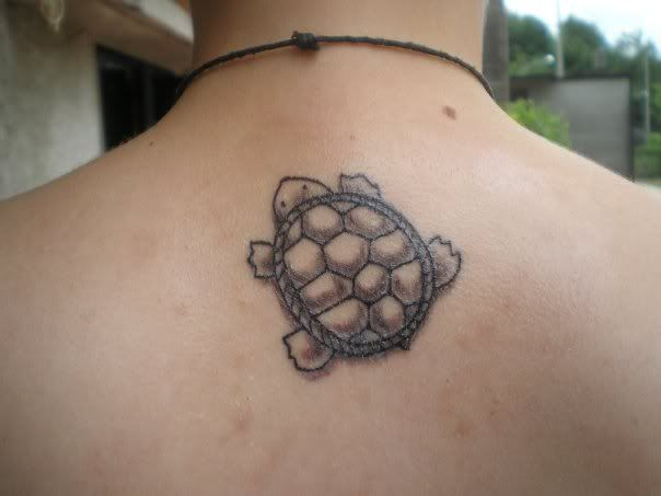 1000 ideas about small turtle tattoo on pinterest for Little turtle tattoo