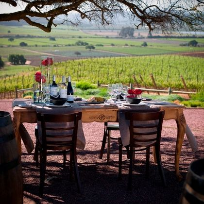perfect setting for a wine tasting - charity buzz