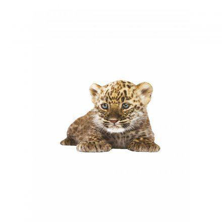 Cute KEK Amsterdam Wandtattoo Baby Leopard